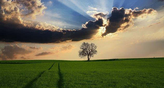 「田舎で実践2」自給自足的な田舎暮らしで最低限必要な物を挙げてみた。
