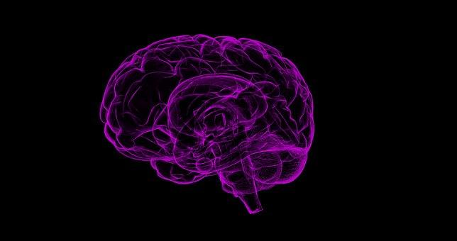 スティーブ・ジョブズはサイコパスだった!?そしてあなたのすぐ近くにもいるかもしれない、サイコパスとは!?現代の脳科学が解明した、その恐るべき人種について